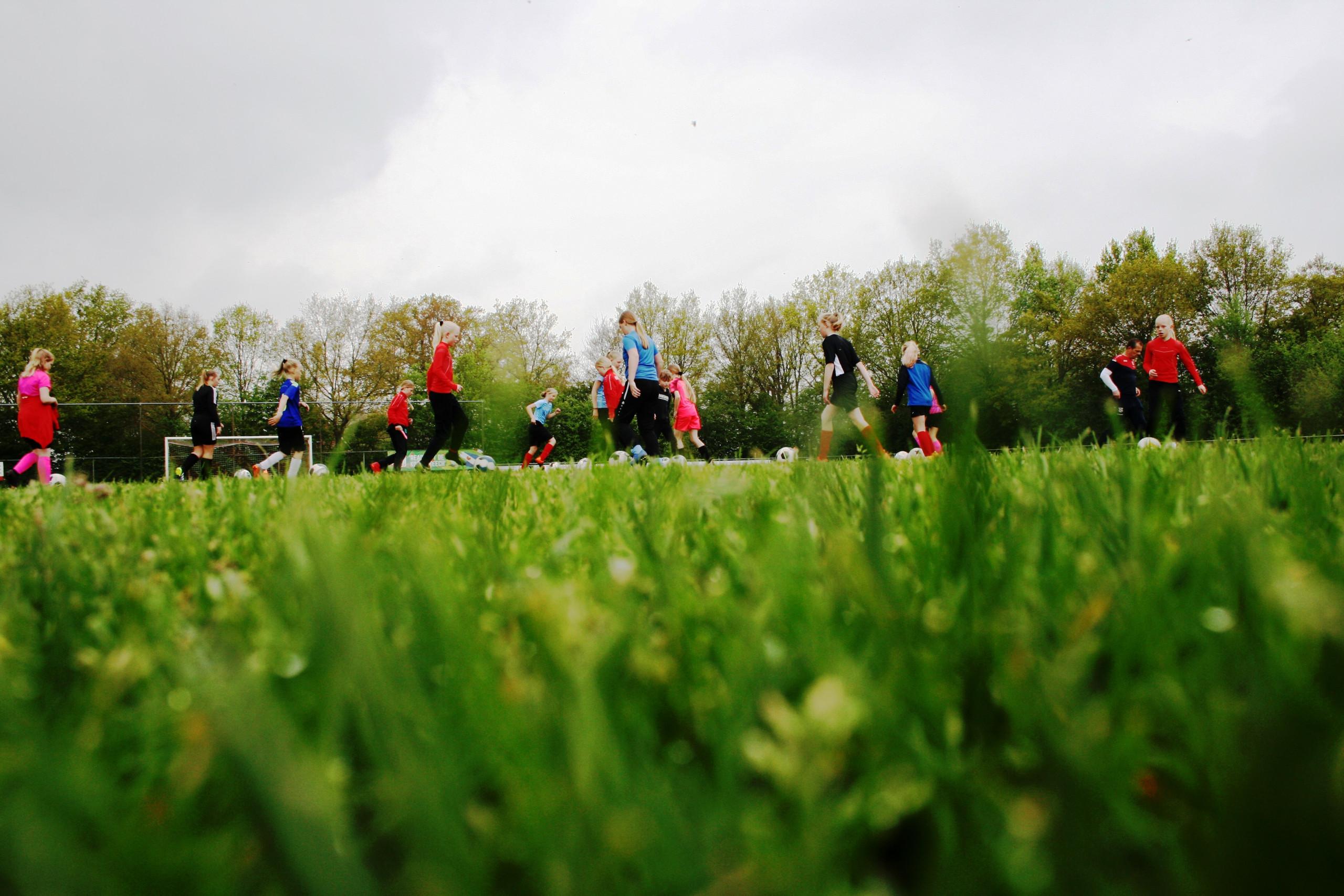 Foto's training SC heerenveen
